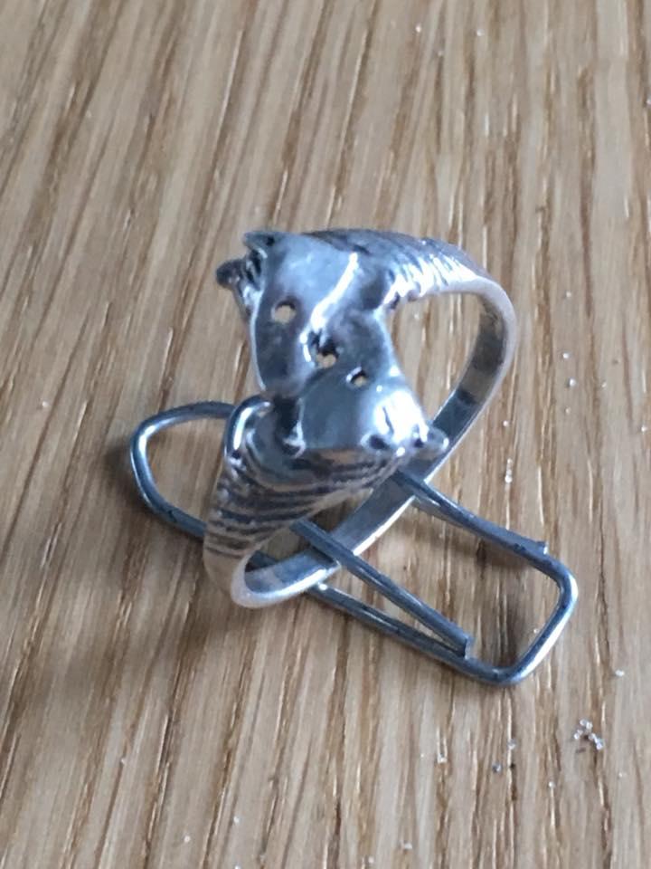 Zilveren ring 20122017